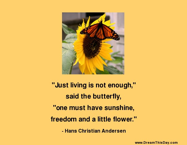 Friendship Quotes About Butterflies : Quotes about butterfly and friendship